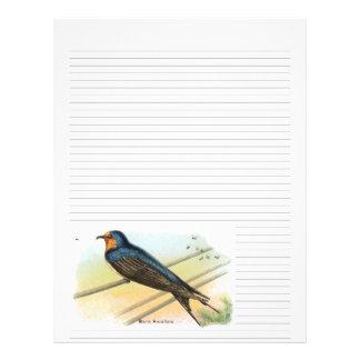 Vintage Barn Swallow Lined Letterhead