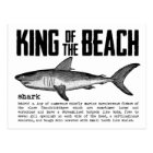Vintage Beach King Shark Definition Postcard
