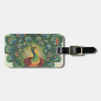 Vintage, Beautiful Peacok Luggage Tag