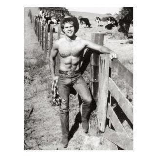 Vintage Beefcake Cowboy Postcard