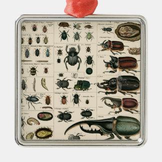 Vintage Beetle Illustration Metal Ornament
