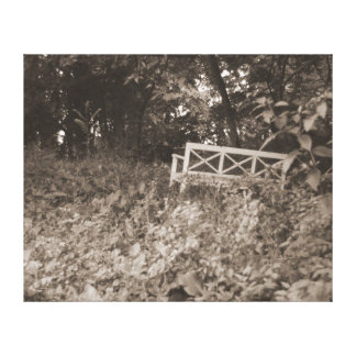 Vintage Bench Canvas Print