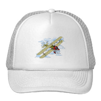 Vintage Biplane Flying Trucker Hat