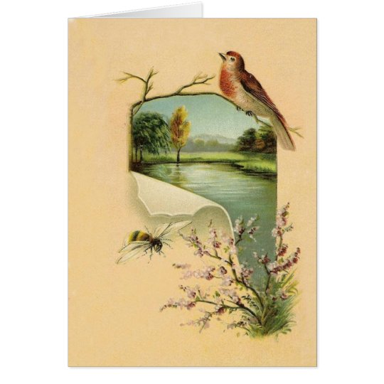 Vintage Bird and Bee Note Cards