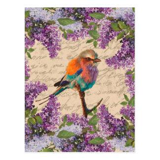 Vintage bird and lilac postcard