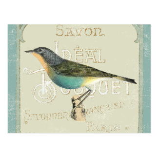 Vintage Bird Facing the Left Postcard