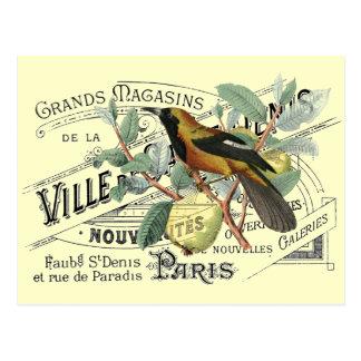Vintage Bird in Fruit Tree Ephemera Collage Postcard