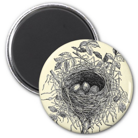Vintage Bird Nest Illustration 2 Inch Round Magnet