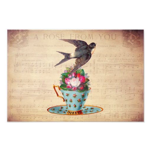 Vintage Bird, Roses, and Teacup Photograph