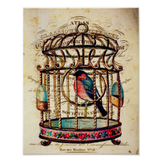 Vintage Birdcage French Paper Art Print