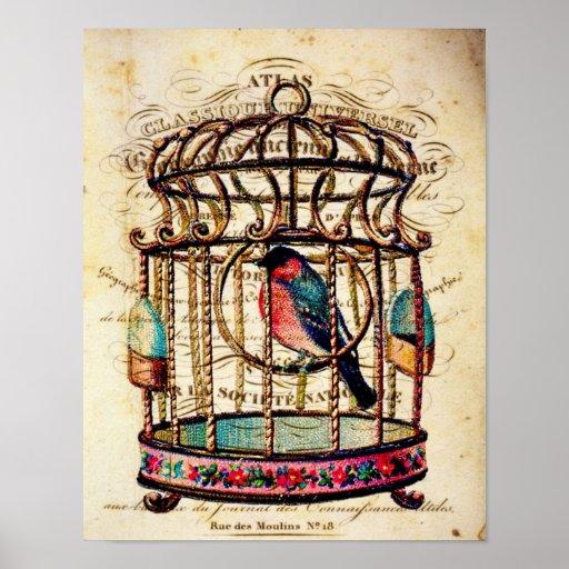 Vintage Birdcage French Paper Art Print