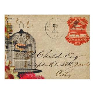 Vintage birdcage postcard