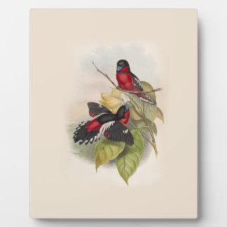 Vintage Birds 002 Plaque