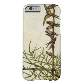 Vintage Birds on Bamboo Barely There iPhone 6 Case