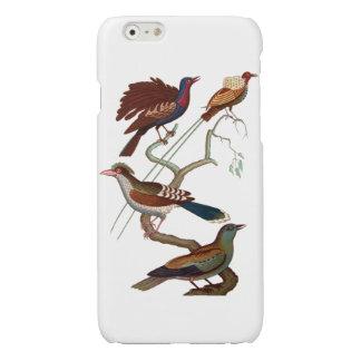 Vintage Birds or Paradise
