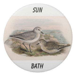 Vintage-birds-taking-sunbath Eraser