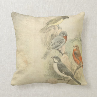Vintage Birds Worn Design Throw Pillow