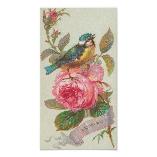 Vintage Birthday Card With Bird And Roses Poster