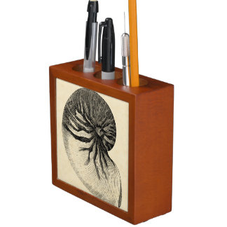 Vintage Black and White Conch Shell Pencil Holder