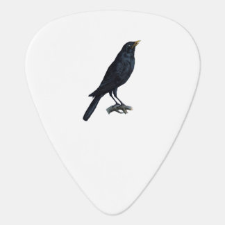 Vintage Blackbird Crow Illustration Guitar Pick
