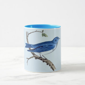 Vintage Blue Bird Combo Mug