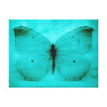 Vintage blue butterfly canvas prints