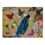 Vintage Blue Colourful Peacock Cute Butterfly