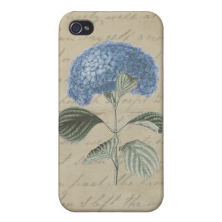 Vintage Blue Hydrangea on Antique Calligraphy iPhone 4/4S Covers
