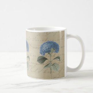Vintage Blue Hydrangea with Antique Calligraphy Classic White Coffee Mug