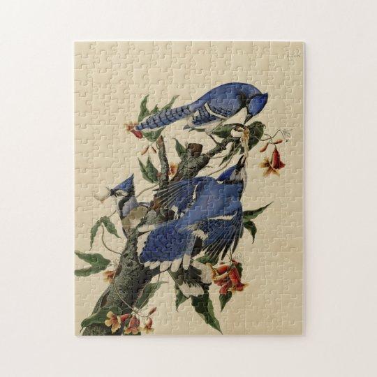 Vintage Blue Jay Puzzle