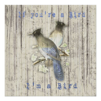 Vintage Blue Jays ~ If you're a Bird I'm a Bird Poster