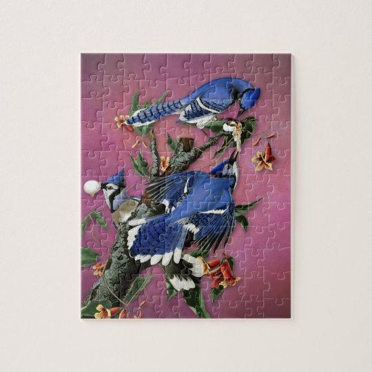 Vintage Blue Jays Illustration (Audubon) Jigsaw Puzzle