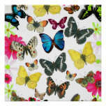 Vintage Blue Red Yellow Colourful Butterflies Poster