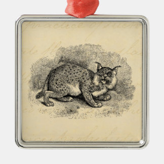 Vintage Bobcat 1800s Bob Cat Lynx Illustration Metal Ornament