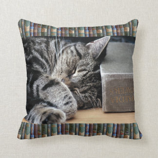 Vintage Book Lover Sleeping Cat Cushion