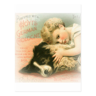 Vintage Border Collie Postcard