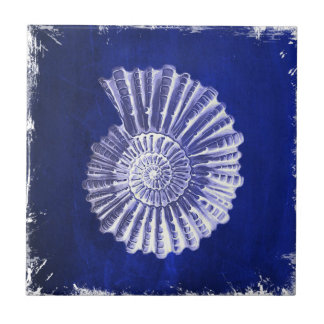 vintage botanical Coastal Blue White seashell Tile