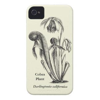 Vintage Botanical Cobra Plant iPhone 4 Cover