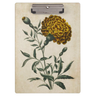 Vintage Botanical Floral African Marigold Clipboard