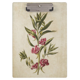 Vintage Botanical Floral Balsam Illustration Clipboard