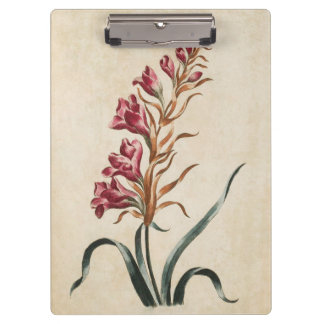Vintage Botanical Floral Foxglove Illustration Clipboard