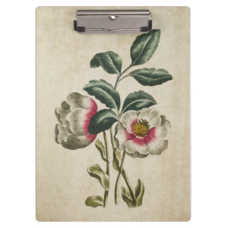 Vintage Botanical Floral Hellebore Illustration Clipboard