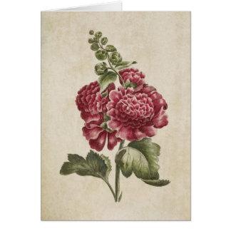 Vintage Botanical Floral Hollyhock Illustration Card