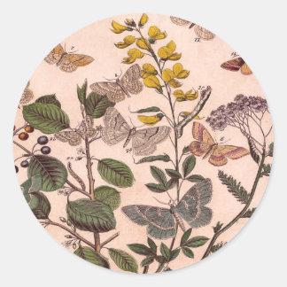 Vintage Botanical Floral Illustration Wildflowers Classic Round Sticker