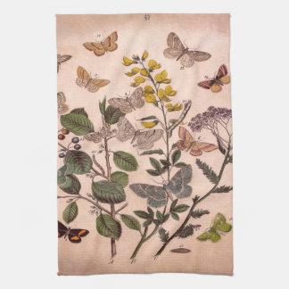 Vintage Botanical Floral Illustration Wildflowers Kitchen Towel