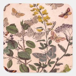 Vintage Botanical Floral Illustration Wildflowers Square Sticker