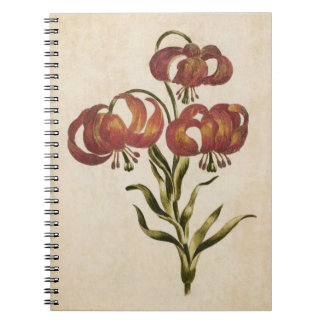 Vintage Botanical Floral Mountain Lily Notebook