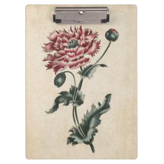 Vintage Botanical Floral Poppy Illustration Clipboard