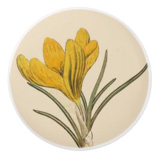 Vintage Botanical Flower Art Floral Garden Knob