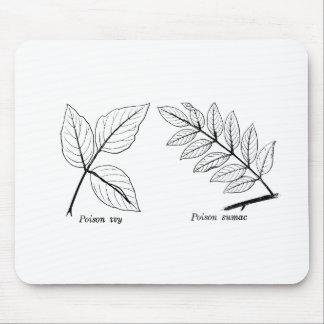 Vintage Botanical Leaves Mouse Pad